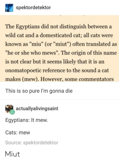 "Commentators: spektordetektor  The Egyptians did not distinguish between a  wild cat and a domesticated cat; all cats were  known as ""miu"" (or ""miut"") often translated as  he or she who mews"". The origin of this name  is not clear but it seems likely that it is an  onomatopoetic reference to the sound a cat  makes (mew). However, some commentators  This is so pure I'm gonna die  actuallyalivingsaint  Egyptians: It mew  Cats: mew  Source: spektordetektor Miut"