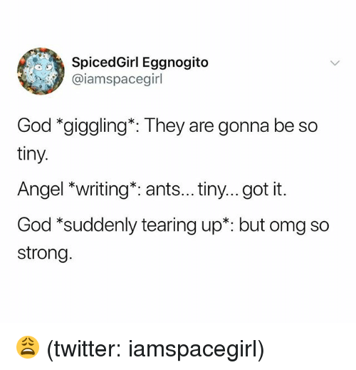 God, Omg, and Twitter: SpicedGirl Eggnogito  @iamspacegirl  God *giggling*: They are gonna be so  tiny.  Angel *writing*: ants... tiny...got it.  God *suddenly tearing up*: but omg so  strong 😩 (twitter: iamspacegirl)