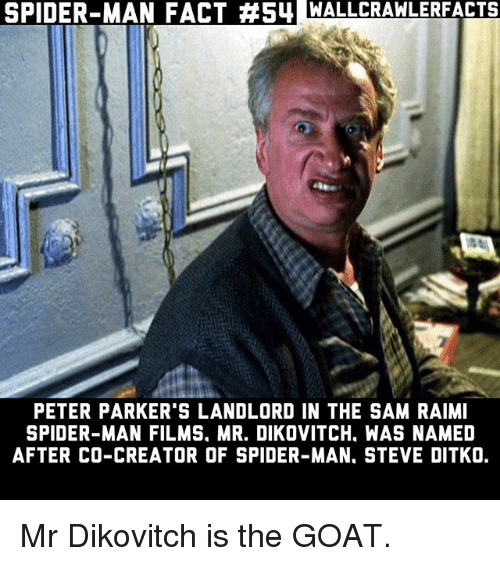 Memes, Spider, and SpiderMan: SPIDER-MAN FACT #54 MALLCRAWLERFACTS  PETER PARKER'S LANDLORD IN THE SAM RAIMI  SPIDER-MAN FILMS. MR. DIKOVITCH. WAS NAMED  AFTER CO-CREATOR OF SPIDER-MAN. STEVE DITKO. Mr Dikovitch is the GOAT.
