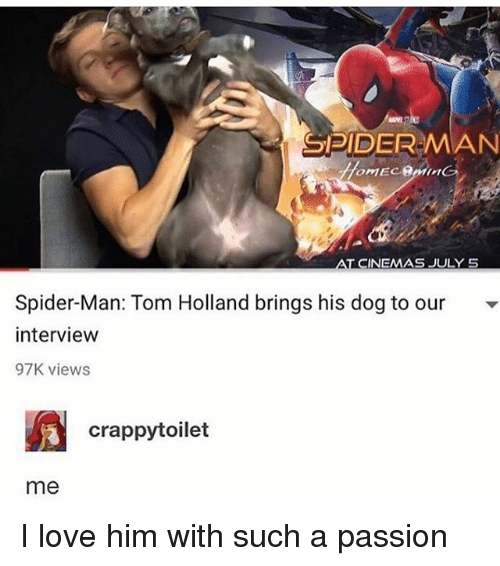 tom hollander: SPIDERMAN  AT CINEMAS JULY 5  Spider-Man: Tom Holland brings his dog to our  intervievw  97K viewS  crappytoilet  me I love him with such a passion