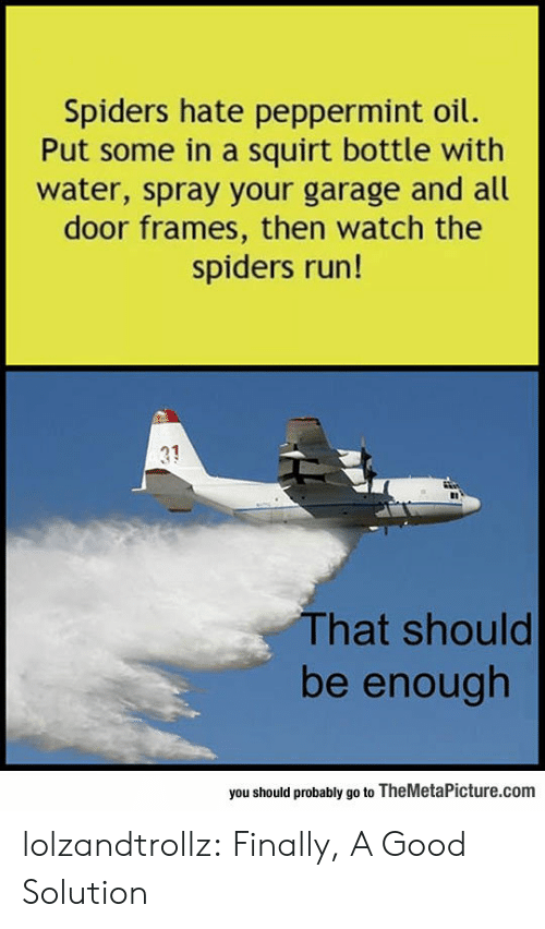 garage: Spiders hate peppermint oil.  Put some in a squirt bottle with  water, spray your garage and all  door frames, then watch the  spiders run!  31  That should  be enough  you should probably go to TheMetaPicture.com lolzandtrollz:  Finally, A Good Solution