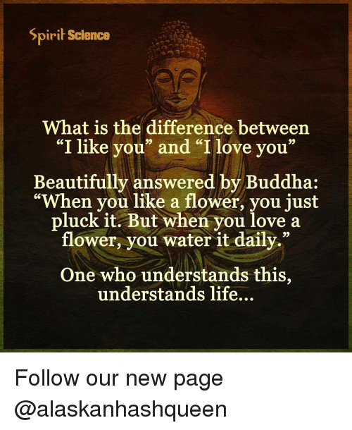 """Spirit Science: Spirit Science  What is the difference between  """"I like you"""" and """"I love you  99  Beautifully answered by Buddha:  """"When you like a flower, you just  pluck it. But when you love a  flower, you water it daily.""""  One who understands this  understands life... Follow our new page @alaskanhashqueen"""