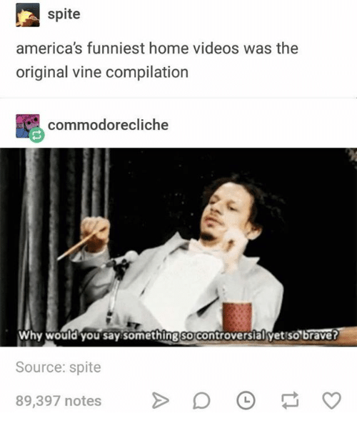 Videos, Vine, and Home: spite  america's funniest home videos was the  original vine compilation  颸commodorecliche  Why would you say something so controversiäl yet so braver  Source: spite  89,397 notes >