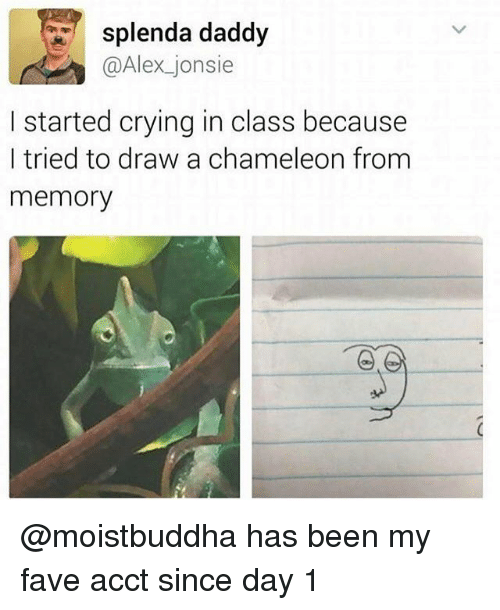 Crying, Chameleon, and Fave: splenda daddy  @Alex jonsie  I started crying in class because  I tried to draw a chameleon from  memory @moistbuddha has been my fave acct since day 1