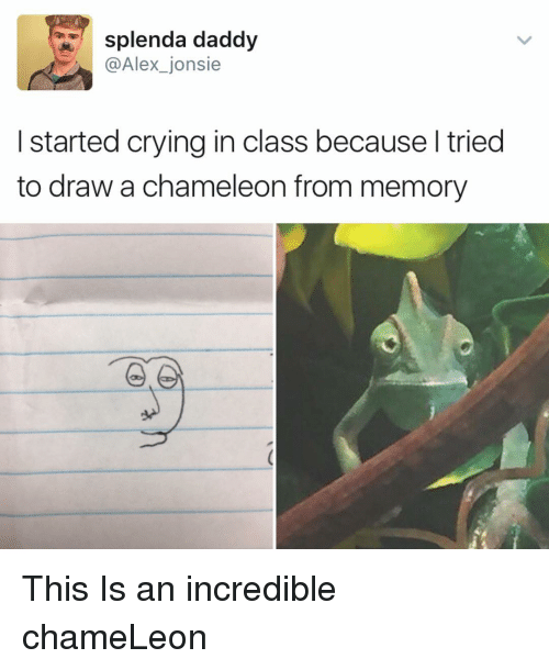 Memes, Chameleon, and 🤖: splenda daddy  @Alex jonsie  started crying in class becauseltried  to draw a chameleon from memory This Is an incredible chameLeon