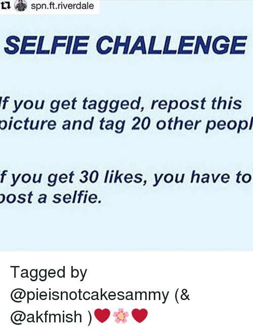 Memes, 🤖, and Spn: spn.ft.riverdale  SELFIE CHALLENGE  f you get tagged, repost this  picture and tag 20 other peopl  f you get 30 likes, you have to  post a selfie. Tagged by @pieisnotcakesammy (& @akfmish )❤️🌸❤️