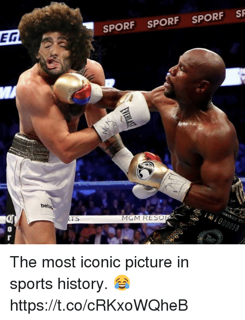 mgm: SPORF SPORF SPORF SF  EG  be  TS  MGM RESO  0 The most iconic picture in sports history. 😂 https://t.co/cRKxoWQheB