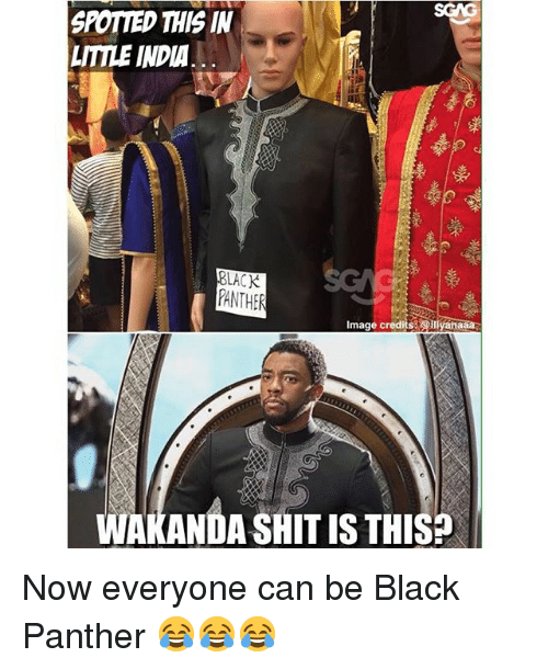Memes, Shit, and Black: SPOTIED THIS IN  LITILE INDIA  PANTHE  Image credits eiliyahaaa  WAKANDA SHIT IS THIS? Now everyone can be Black Panther 😂😂😂