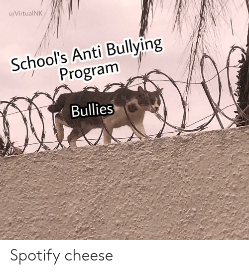 cheese: Spotify cheese