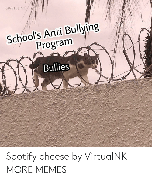 cheese: Spotify cheese by VirtualNK MORE MEMES