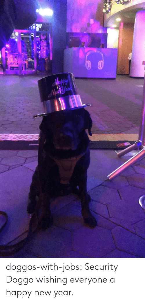happy new year: Sppy  NaYean doggos-with-jobs:  Security Doggo wishing everyone a happy new year.