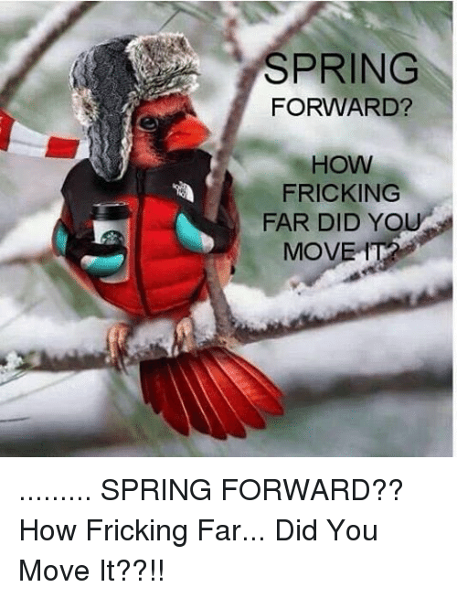 Memes, Yo, and Spring: SPRING  FORWARD?  HOW  a FRICKING  FAR DID YO  MOVE ......... SPRING FORWARD?? How Fricking Far... Did You Move It??!!