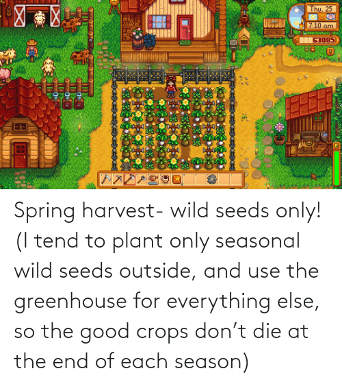 seeds: Spring harvest- wild seeds only! (I tend to plant only seasonal wild seeds outside, and use the greenhouse for everything else, so the good crops don't die at the end of each season)