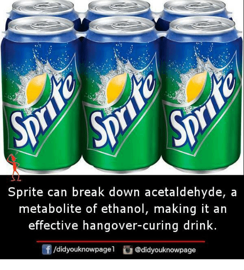 Memes, Hangover, and Break: Sprite can break down acetaldehyde, a  metabolite of ethanol, making it an  effective hangover-curing drink.  /didyouknowpagel @didyouknowpage