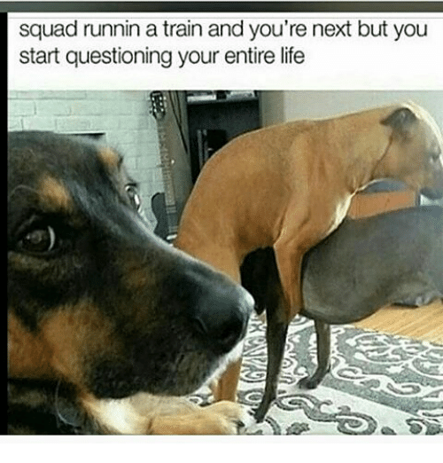 Life, Memes, and Squad: squad runnin a train and you're next but you  start questioning your entire life