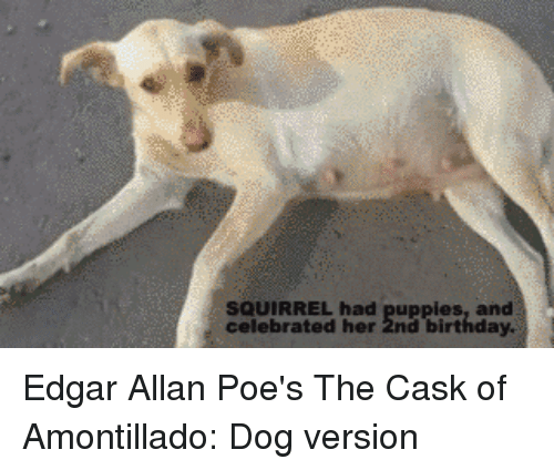 """edgar allen poes  the cask The portable edgar allan poe by edgar allan poe  of usher,"""" """"the cask of  amontillado,"""" and """"the murders in the rue morgue,"""" the world's first detective  story."""