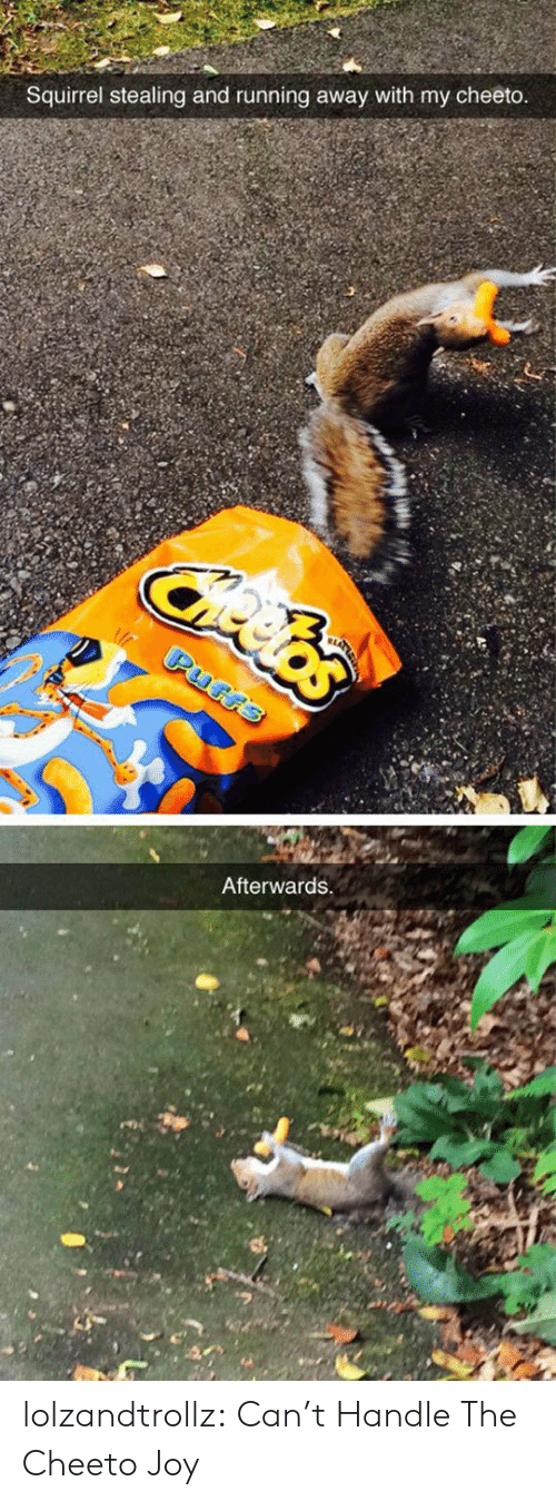 running away: Squirrel stealing and running away with my cheeto  Afterwards lolzandtrollz:  Can't Handle The Cheeto Joy