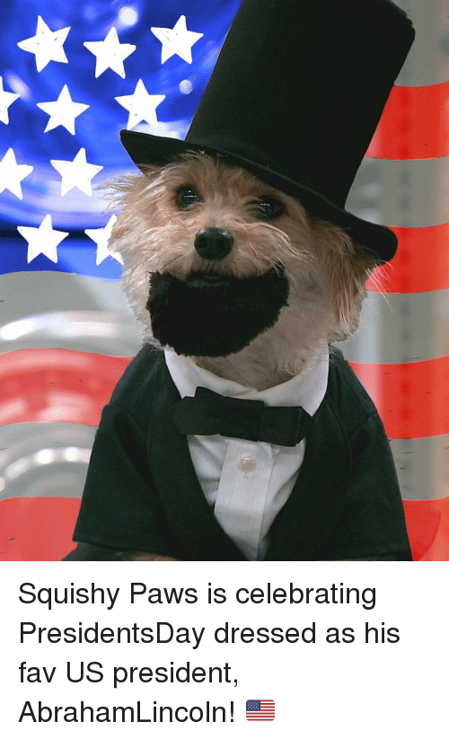 Memes, 🤖, and President: Squishy Paws is celebrating PresidentsDay dressed as his fav US president, AbrahamLincoln! 🇺🇸