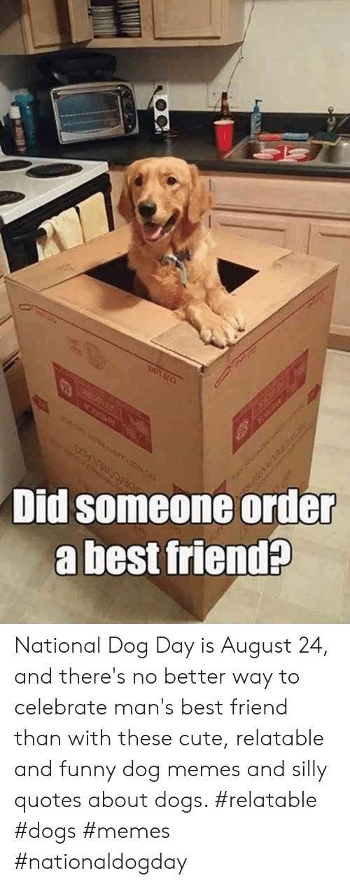 Silly Quotes: SRA PA  Did someone order  a best friend?  1 National Dog Day is August 24, and there's no better way to celebrate man's best friend than with these cute, relatable and funny dog memes and silly quotes about dogs.  #relatable #dogs #memes #nationaldogday