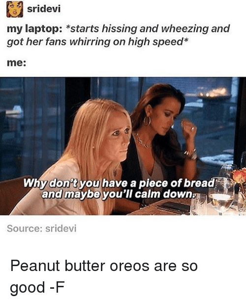 sridevi: sridevi  my laptop: *starts hissing and wheezing and  got her fans whirring on high speed  me:  Why don't you have a piece of bread  and maybe you'll calm down  Source: Sridevi Peanut butter oreos are so good -F