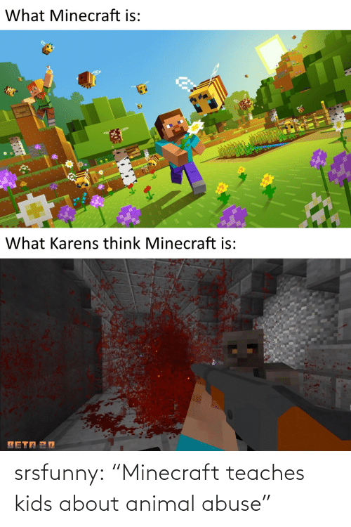 "abuse: srsfunny:  ""Minecraft teaches kids about animal abuse"""
