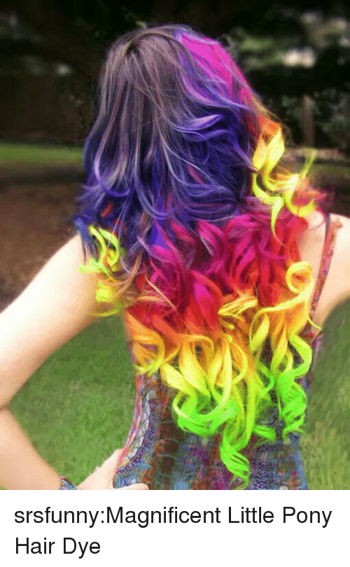 Little Pony: srsfunny:Magnificent Little Pony Hair Dye