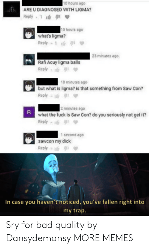 quality: Sry for bad quality by Dansydemansy MORE MEMES