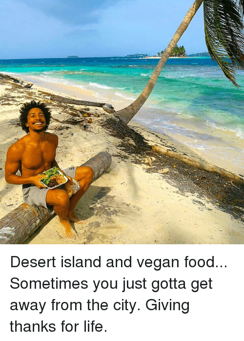Memes, 🤖, and Desert: st Desert island and vegan food... Sometimes you just gotta get away from the city. Giving thanks for life.