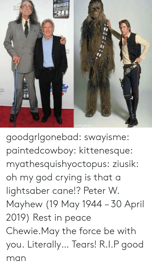 cane: St. Ju  Resc  EMPIRE  ns  al  ipi  OD goodgrlgonebad:  swayisme:  paintedcowboy:  kittenesque: myathesquishyoctopus:  ziusik:  oh my god  crying  is that a lightsaber cane!?    Peter W. Mayhew (19 May 1944 – 30 April 2019)  Rest in peace Chewie.May the force be with you.  Literally… Tears!  R.I.P good man