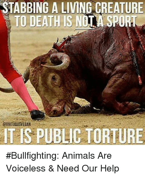 animal abuse the torturing of animals
