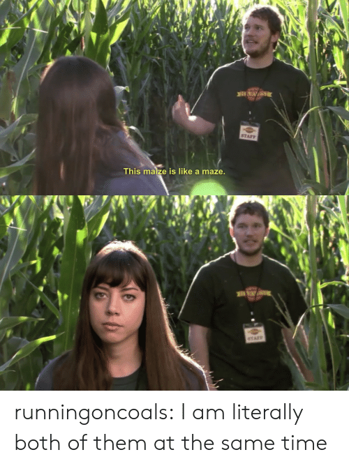 maze: STAFF  This maize is like a maze runningoncoals:  I am literally both of them at the same time