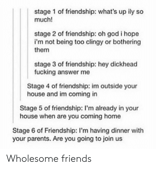ily: stage 1 of friendship: what's up ily so  much!  stage 2 of friendship: oh god i hope  i'm not being too clingy or bothering  them  stage 3 of friendship: hey dickhead  fucking answer me  Stage 4 of friendship: im outside your  house and im coming in  Stage 5 of friendship: I'm already in your  house when are you coming home  Stage 6 of Friendship: I'm having dinner with  your parents. Are you going to join us Wholesome friends