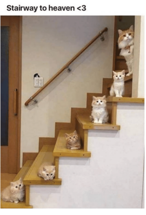 Stairway to Heaven: Stairway to heaven<3