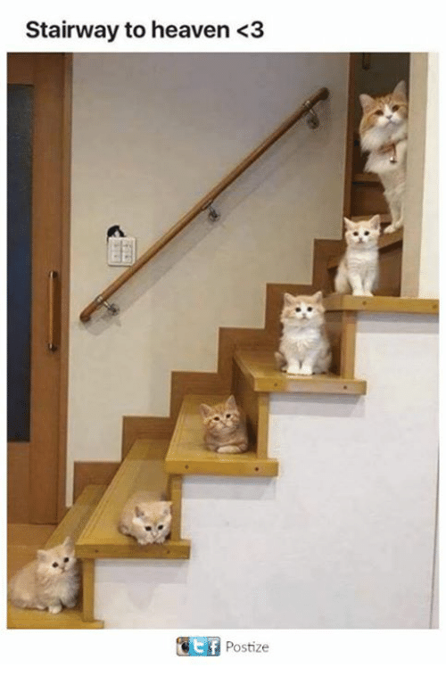 Stairway to Heaven: Stairway to heaven <3  Postize