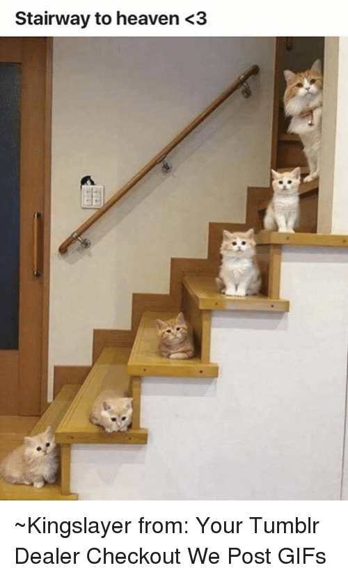 Stairway to Heaven: Stairway to heaven <3 ~Kingslayer from: Your Tumblr Dealer   Checkout We Post GIFs