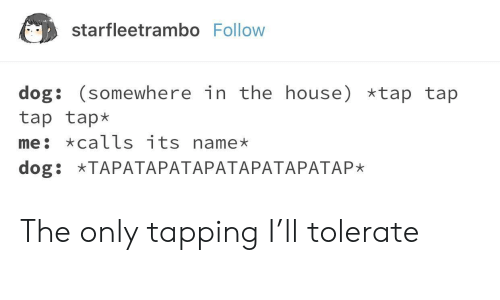 tap-tap-tap: starfleetrambo Follow  dog: (somewhere in the house) *tap tap  tap tap*  me: calls its name  dog: TAPATAPATAPATAPATAPATAP* The only tapping I'll tolerate