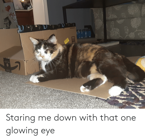 glowing: Staring me down with that one glowing eye