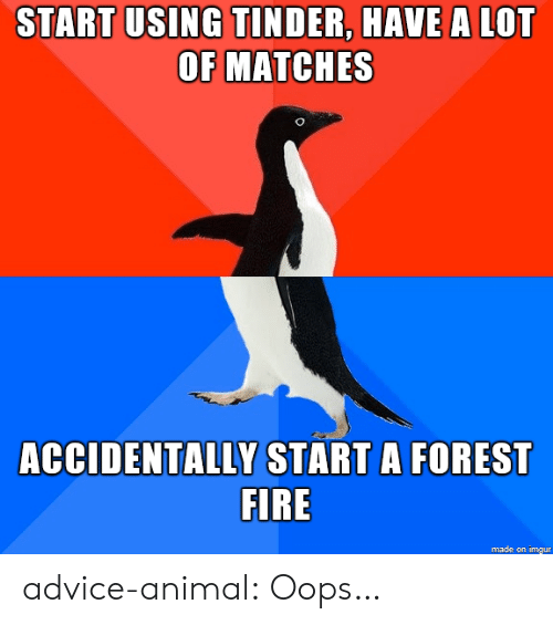 Forest Fire: START USING TINDER, HAVE A LOT  OF MATCHES  ACCIDENTALLY START A FOREST  FIRE  made on imgur advice-animal:  Oops…