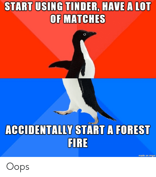 Forest Fire: START USING TINDER, HAVE A LOT  OF MATCHES  ACCIDENTALLY START A FOREST  FIRE  made on imgur Oops