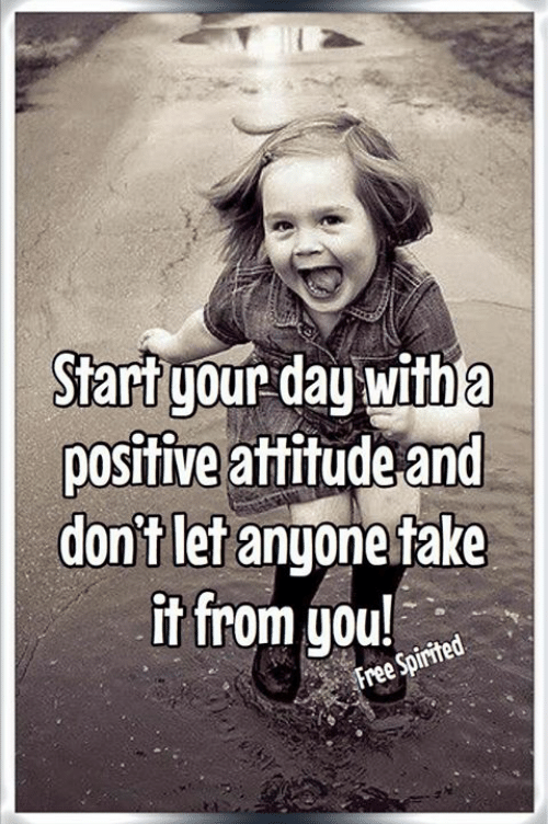 Fake It: Start your day with a  positive attitude and  don't let anyone fake  it from you!  Free Spirited