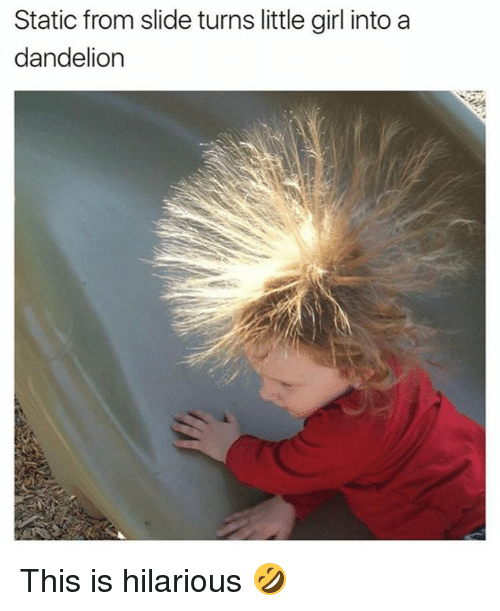 statics: Static from slide turns little girl into a  dandelion This is hilarious 🤣