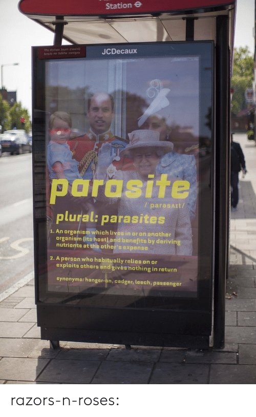 organism: Station e  JCDecaux  parasite  plural: parasites  / paresAIt/  1. An organism which lives in or on another  organism lits host] and benefits by derivin  nutrients at the other's expense  2. A person who habitually relies on or  exploits others and givèshothing in return  synonyms: hanger-on, cadger, leech, passenger razors-n-roses: