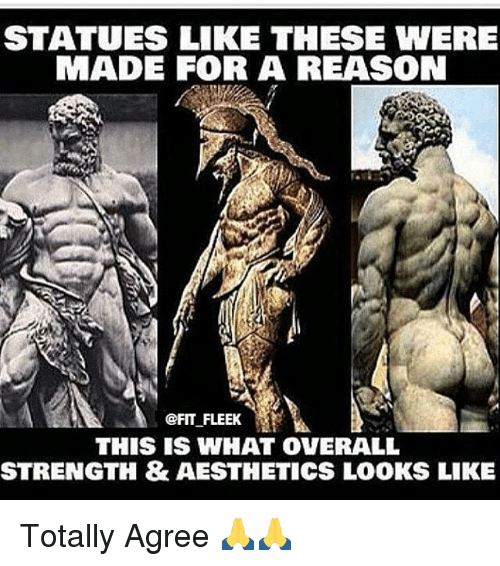 Aestheticly: STATUES LIKE THESE WERE  MADE FOR A REASON  @FIT FLEEK  THIS IS WHAT OVERALL  STRENGTH & AESTHETICS LOOKS LIKE Totally Agree 🙏🙏