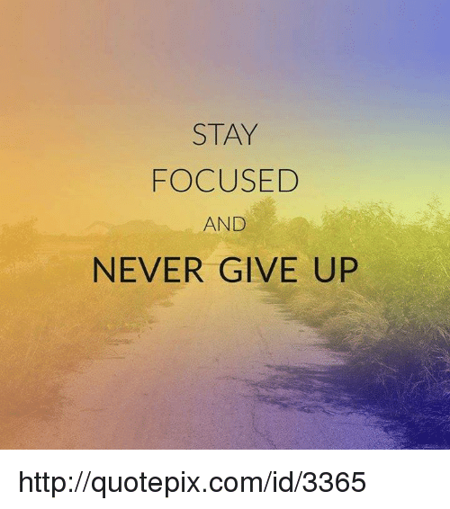 stay focused and never give up http quotepix com id 3365 4698968 stay focused and never give up quotepixcomid3365 meme on sizzle