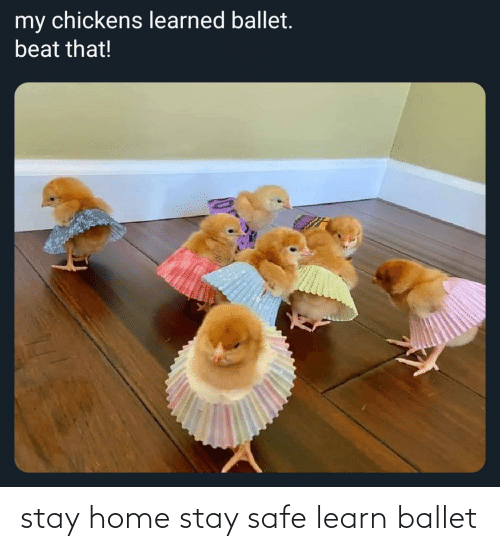 Stay Safe: stay home stay safe learn ballet