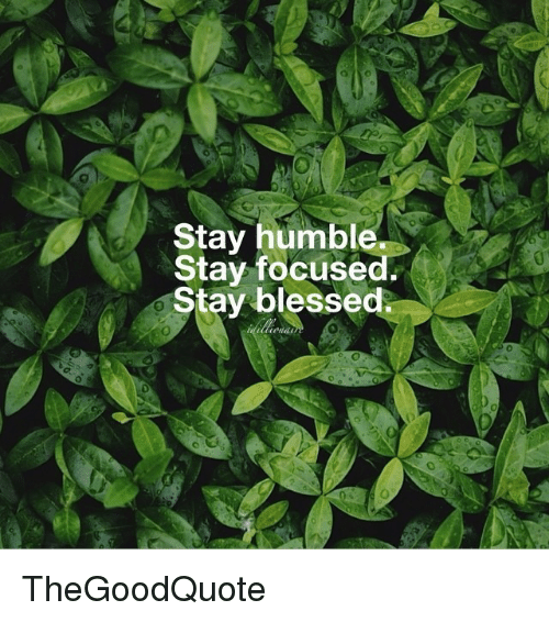 humbleness: Stay humble  Stay focuse  Stay blessed. TheGoodQuote