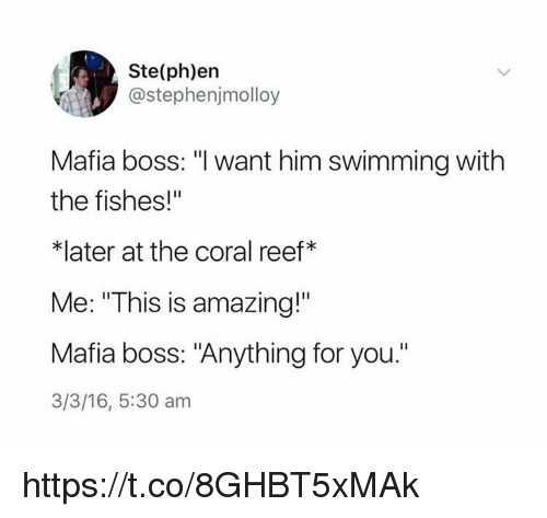 "Memes, Amazing, and 16.5: Ste(ph)en  @stephenjmolloy  Mafia boss: ""I want him swimming with  the fishes!""  *later at the coral reef*  Me: ""This is amazing!""  Mafia boss: ""Anything for you.""  3/3/16, 5:30 am https://t.co/8GHBT5xMAk"
