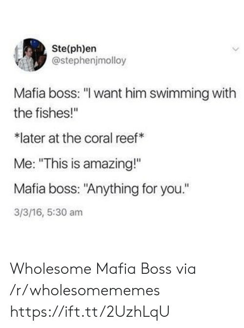 """16.5: Ste(ph)en  @stephenjmolloy  Mafia boss: """"I want him swimming with  the fishes!""""  later at the coral reef  Me: """"This is amazing!""""  Mafia boss: """"Anything for you.""""  3/3/16, 5:30 am Wholesome Mafia Boss via /r/wholesomememes https://ift.tt/2UzhLqU"""