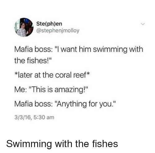 """16.5: Ste(ph)ern  @stephenjmolloy  Mafia boss: """"l want him swimming with  the fishes!""""  *later at the coral reef*  Me: """"This is amazing!""""  Mafia boss: """"Anything for you.""""  3/3/16, 5:30 am Swimming with the fishes"""