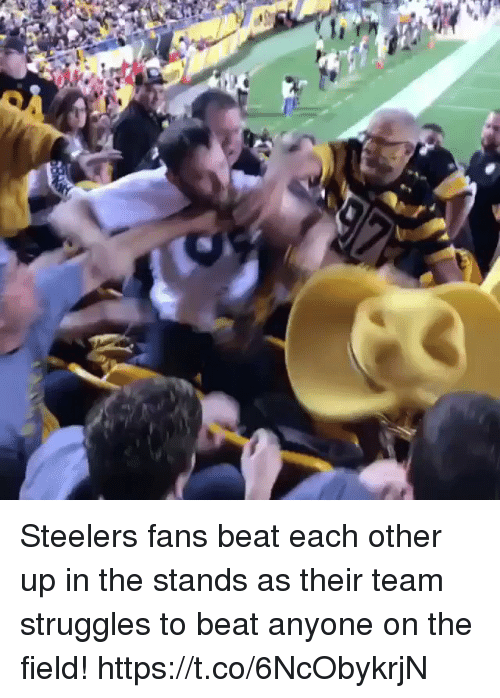 Steelers Fans: Steelers fans beat each other up in the stands as their team struggles to beat anyone on the field!  https://t.co/6NcObykrjN